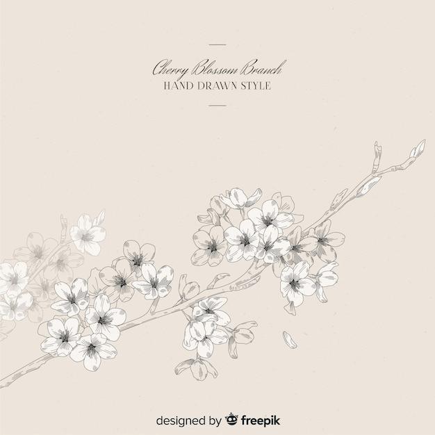Hand gezeichneter kirschblüten-niederlassungshintergrund Kostenlosen Vektoren