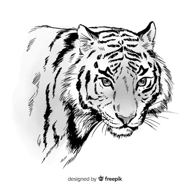 Hand gezeichneter tigerhintergrund Kostenlosen Vektoren