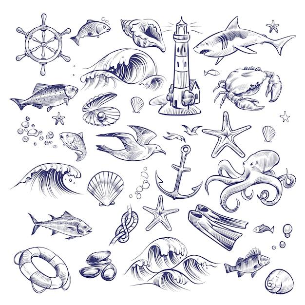 Hand gezeichnetes marineset. sea ocean voyage leuchtturm hai krabben tintenfisch seestern knoten krabben muschel rettungsring sammlung Premium Vektoren