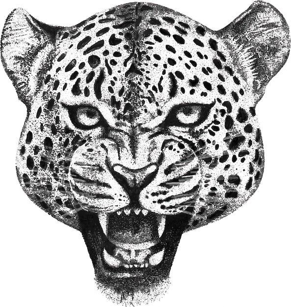 Hand gezeichnetes porträt des brüllenleopardkopfes Premium Vektoren