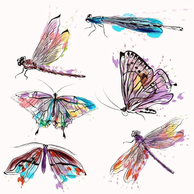 Handgemalte insekten sammlung Premium Vektoren