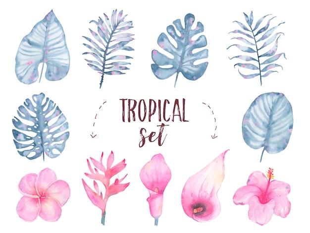 Handgemalter tropischer indigoblattblume frangipanihibiscus-callaliliensatz des aquarells lokalisiert auf weiß Kostenlosen Vektoren