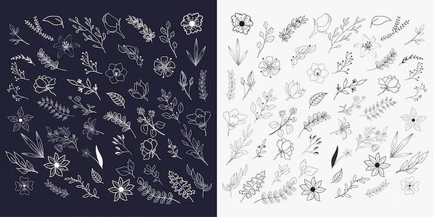 Handgezeichnete florale elemente sammlungen Premium Vektoren