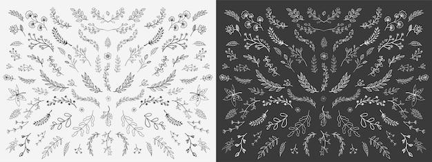 Handgezeichnete florale elemente Premium Vektoren