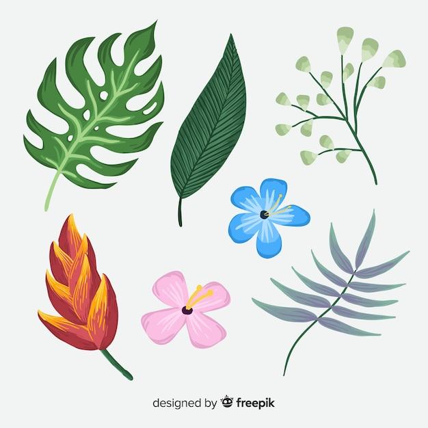 handgezeichnete tropische blumen und blätter | download