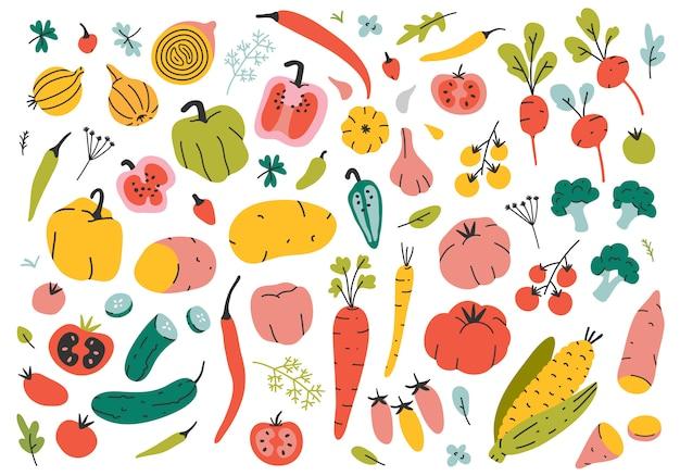 Handgezeichnete verschiedene arten von gemüse. Premium Vektoren