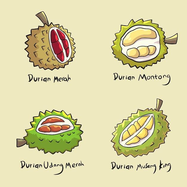 Handgezeichnetes durian-set Premium Vektoren