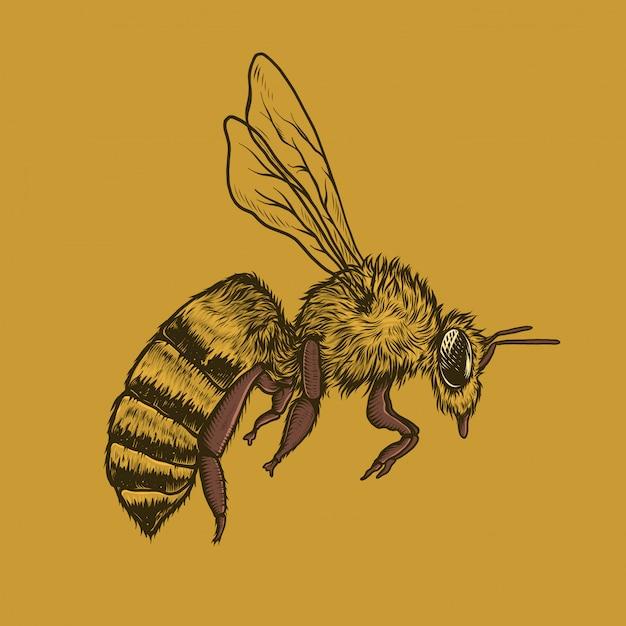 Handzeichnungsweinlese-fliegenbienen-vektorillustration Premium Vektoren