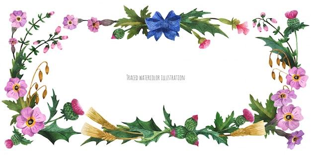 Hauptbanner aus schottischen pflanzen mit blauem seidenschleife Premium Vektoren