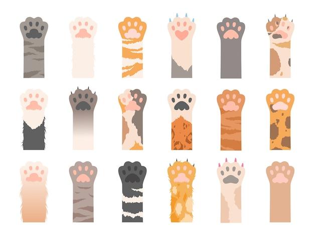 Haustiere pfote. verschiedene pfoten der wildkatzen mit krallensammlung. farbige haustierpfote mit klaue, tierkatzenfußillustration Premium Vektoren