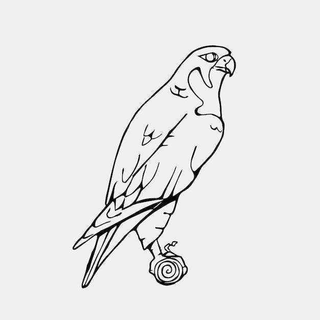 Hawk illustration design Kostenlosen Vektoren