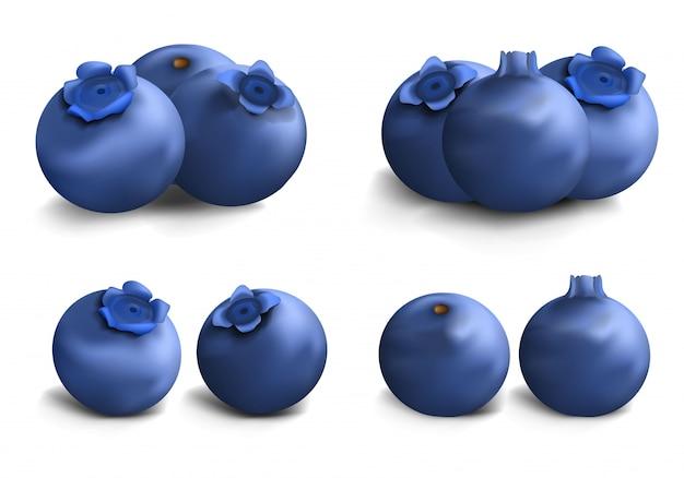 Heidelbeer-icon-set. realistischer satz blaubeervektorikonen für webdesign Premium Vektoren
