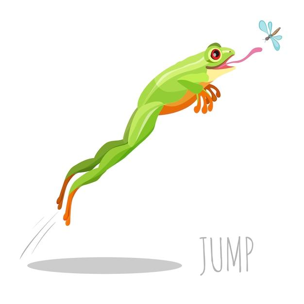 Heller farbiger frosch, der springt, um fliege zu fangen Premium Vektoren