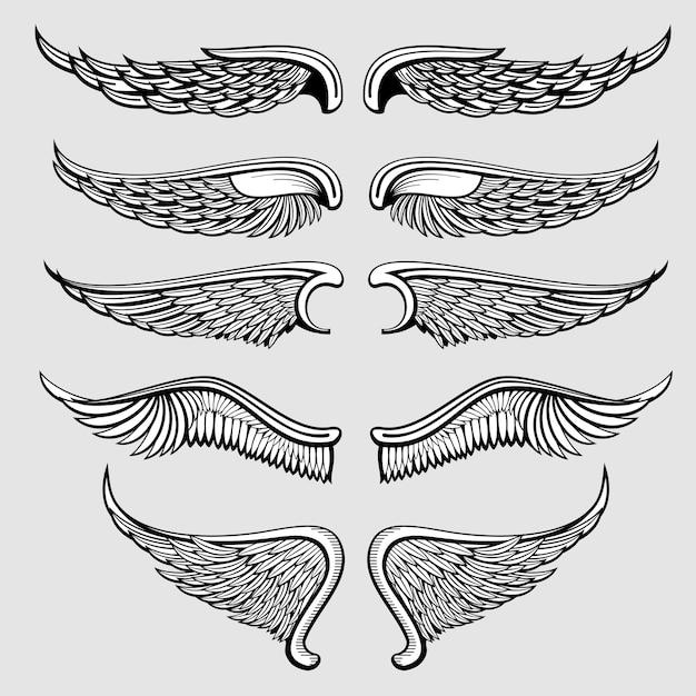 Heraldischer vogel, engelsflügelvektorsatz Premium Vektoren