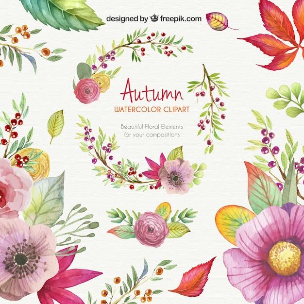 Herbst Aquarell Cliparts Download Der Kostenlosen Vektor