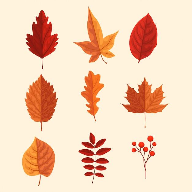 Herbst gesetztes blatt Premium Vektoren