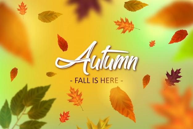 Herbst illustration hintergrund Premium Vektoren