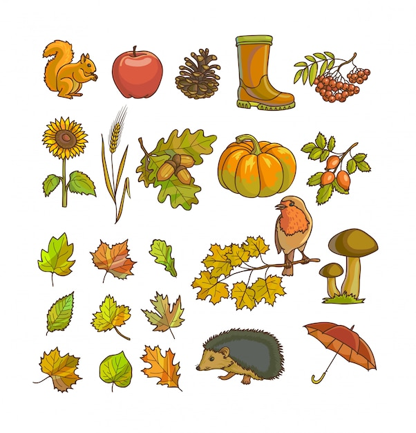 Herbst oder herbst symbol und objekte für design festgelegt. Premium Vektoren