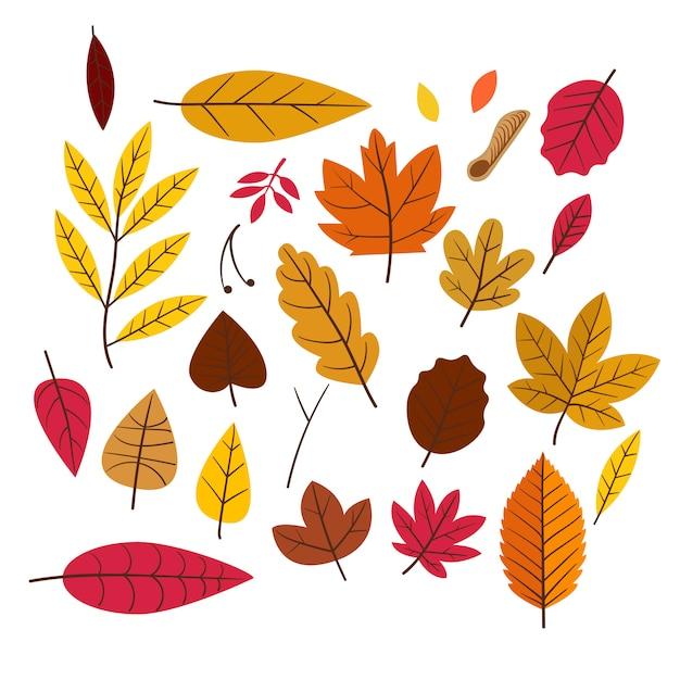 Herbstlaub-auflistung Premium Vektoren