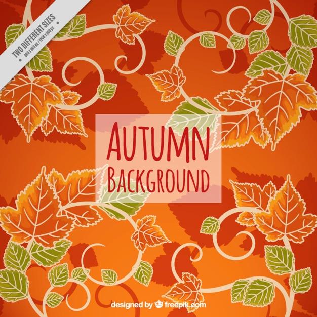 Herbstliche Hintergrund Mit Blättern In Orange Und Grün