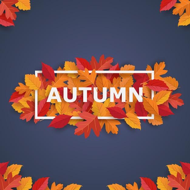 Herbstrahmen mit blättern Premium Vektoren