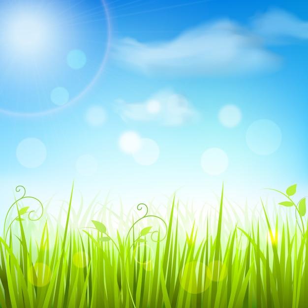 Hintergrund des blauen himmels des frühlingswiesengrases Kostenlosen Vektoren