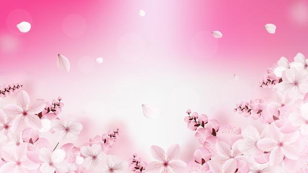 Hintergrund mit blühenden hellrosa kirschblüte-blumen Premium Vektoren