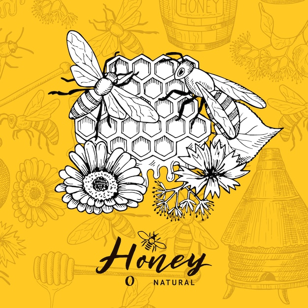 Hintergrund mit skizzierten konturierten honig-designelementen und platz für text. imkerei und bienenwabe, flüchtige nachtischhonigillustration Premium Vektoren