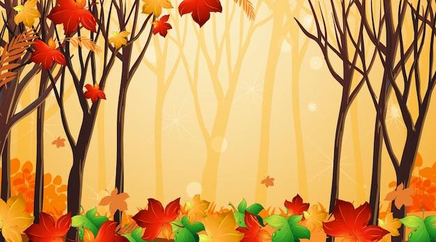 Hintergrunddesignvorlage mit blättern und bäumen Kostenlosen Vektoren