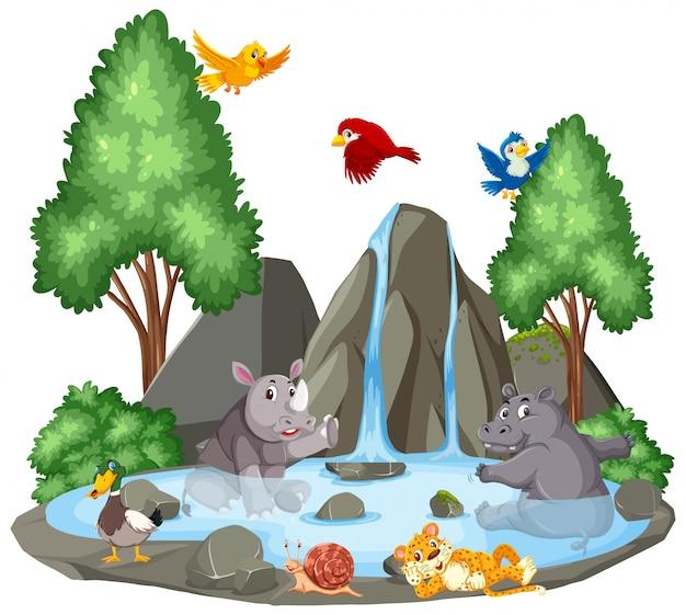 Hintergrundszene von wilden tieren durch den wasserfall Premium Vektoren