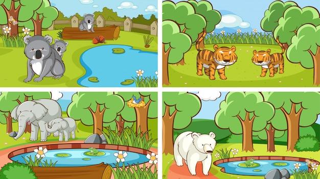 Hintergrundszenen von tieren in freier wildbahn Kostenlosen Vektoren
