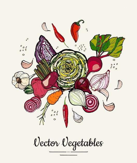 Hipster hand gezeichnete farbige gemüse Premium Vektoren