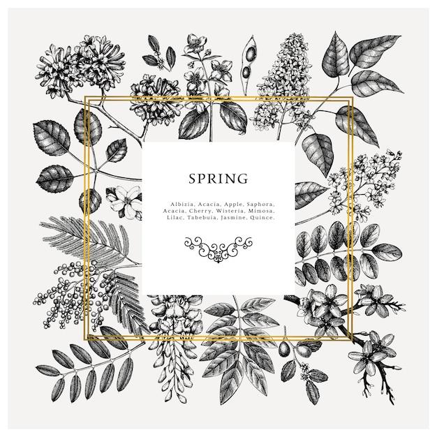Hochzeitseinladung, uawg, grußkarte. weinleserahmen mit frühlingsbäumen mit blumen, blättern, zweigen skizziert. elegante frühlingsblumenschablone - akazie, jasmin, glyzinien, fliederbäume Premium Vektoren