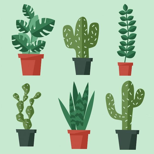 Home pflanzen sammlung. verschiedene bäume gesetzt. vektor-illustration flaches design Premium Vektoren