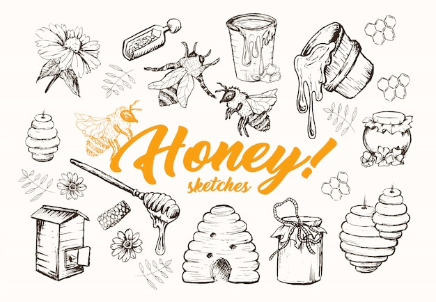 Honey sketches set, bienenstock, honigglas, fass, löffel hand gezeichnet Kostenlosen Vektoren