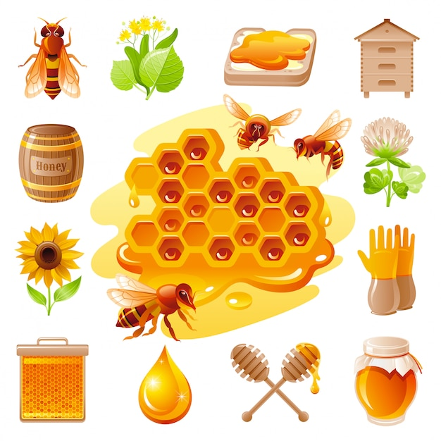 Honig und imkerei-icon-set. Premium Vektoren