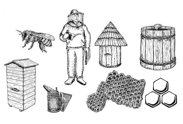 Honig- und imkereisetsammlung Premium Vektoren