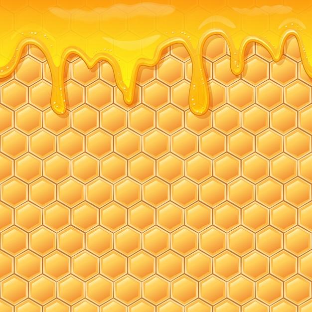 Honig Premium Vektoren
