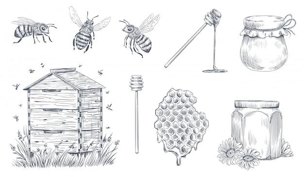 Honigbienen gravur. hand gezeichnete imkerei, weinlese-honigfarm und honigbienenpollen-vektorillustrationssatz Premium Vektoren