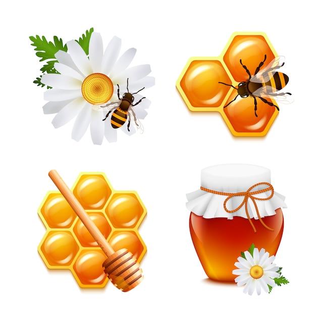 Honignahrungsmittelelementsatz mit gänseblümchenhummelbienenwabe lokalisierte vektorillustration Kostenlosen Vektoren