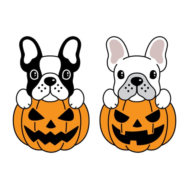 Hund französische bulldogge halloween kürbis Premium Vektoren