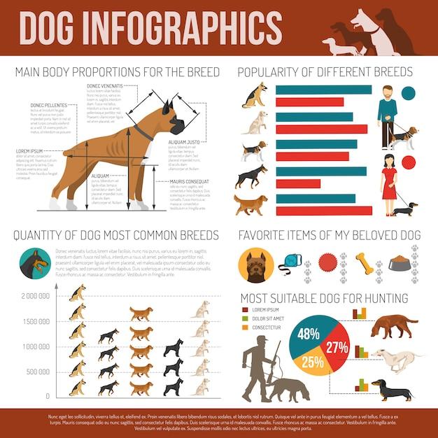 Hund-infografiken-set Kostenlosen Vektoren