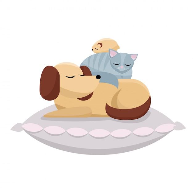 Hund, katze und hamster schlafen bequem. süße träume von pelzigen freunden. Premium Vektoren