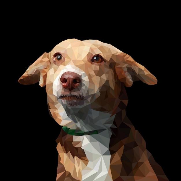 Hund niedrige polyillustration Premium Vektoren