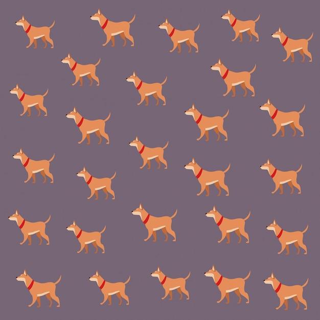 Hund tierhaustiertapete dekoration Premium Vektoren