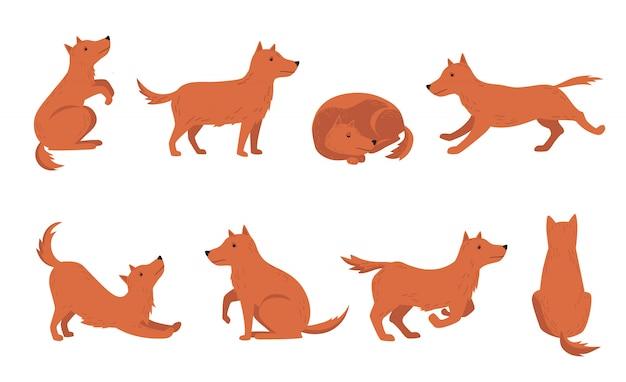 Hund verschiedene aktivitäten eingestellt Kostenlosen Vektoren