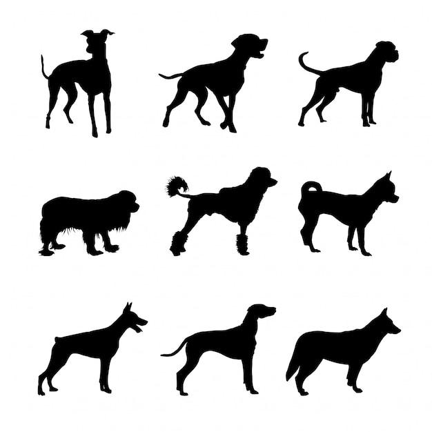 Hundesilhouetten eingestellt Premium Vektoren