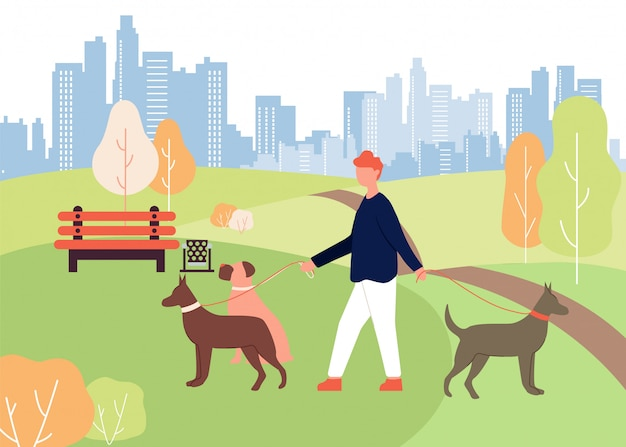 Hundewanderer job cartoon man walk park, der leine hält Premium Vektoren