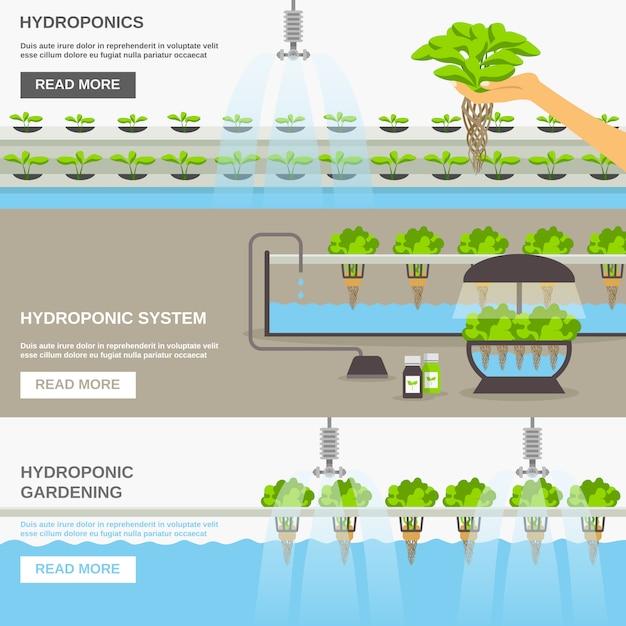 Hydroponisches system banner set Kostenlosen Vektoren