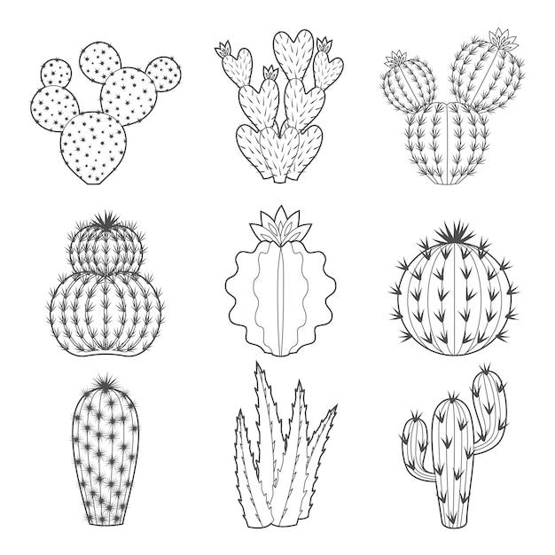 Icon-set kontur kaktus und sukkulenten Premium Vektoren
